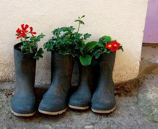 Bottes-pots-fleur